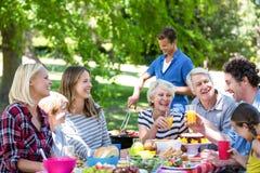 Famille et amis ayant un pique-nique avec le barbecue Photo stock