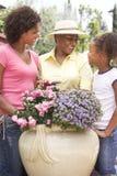 Famille faisant du jardinage ensemble à la maison Photographie stock
