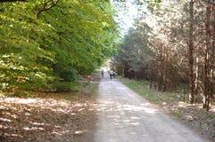 famille faisant un cycle dans le bois Photo stock
