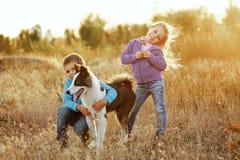 famille Frère, soeur et chien photo stock
