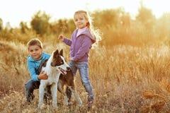 famille Frère, soeur et chien photo libre de droits