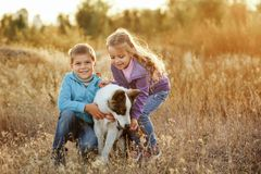 famille Frère, soeur et chien photos libres de droits