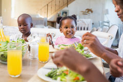 Famille heureuse appréciant un repas sain ensemble images libres de droits