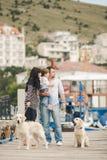 Famille heureuse avec des chiens sur Quay pendant l'été Photographie stock