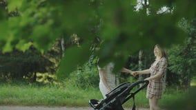 Famille heureuse avec le petit bébé dans le chariot dehors Mère, père et bébé ayant l'amusement ensemble dans le parc vert d'été clips vidéos