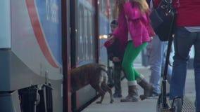 Famille heureuse avec le train d'embarquement de chien, voyageant des vacances, mouvement lent clips vidéos