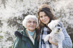 Famille heureuse avec un chien en parc de ressort Photos stock