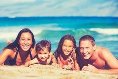 Famille heureuse ayant l'amusement à la plage photo libre de droits