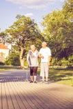 Famille heureuse - couple supérieur marchant par le parc image libre de droits