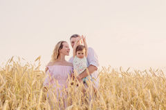 Famille heureuse dans le domaine de céréale au coucher du soleil Images stock