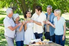 Famille heureuse grillant en parc Image stock