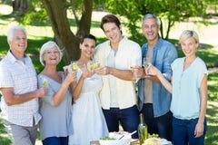 Famille heureuse grillant en parc Image libre de droits