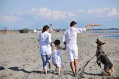 Famille heureuse jouant avec le crabot sur la plage Photo libre de droits
