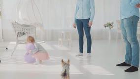 Famille heureuse jouant avec leur belle fille avec le ballon Donnez plus loin son ballon de pourpre de bébé Mouvement lent banque de vidéos