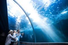 Famille heureuse regardant des poissons dans un réservoir Photos stock