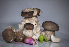 Famille heureuse saine fraîche du boletus de porcini de cèpe de champignons edulis avec l'herbe, l'ail et l'échalote de basilic Photo stock