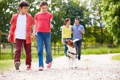 Famille hispanique prenant le chien pour la promenade dans la campagne Photos stock