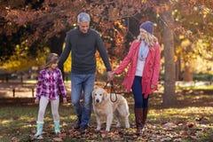 Famille marchant avec le chien au parc photographie stock libre de droits