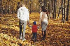 Famille marchant avec le fils par la vue arrière de forêt d'automne image stock
