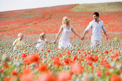 Famille marchant dans des mains de fixation de zone de pavot Images stock