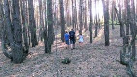 Famille marchant dans les bois banque de vidéos