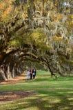Famille marchant en beau parc Images libres de droits