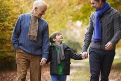 Famille masculine de génération de Multl marchant le long d'Autumn Path photographie stock libre de droits