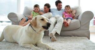 Famille mignonne détendant ensemble sur le divan avec leur chien sur la couverture banque de vidéos