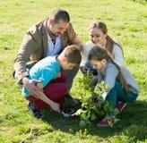 Famille plantant l'arbre dehors Photographie stock libre de droits