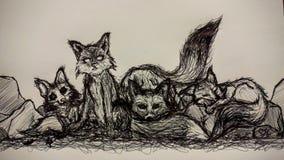 Famille quatre de Fox Image libre de droits