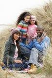 Famille s'asseyant en dunes appréciant le pique-nique l'hiver Image stock