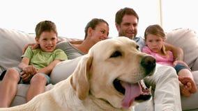 Famille s'asseyant sur le divan avec le chien de Labrador dans le premier plan banque de vidéos