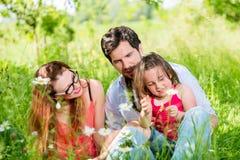 Famille s'asseyant sur le pré Images stock