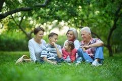 Famille se reposant en parc d'été Photos stock