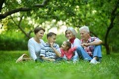 Famille se reposant en parc d'été Photo stock