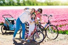Famille sur le vélo dans des domaines de fleur de tulipe, Hollande image stock