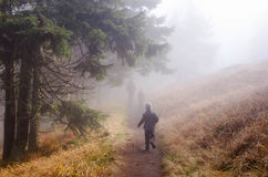 Famille trimardant par une forêt brumeuse Photos libres de droits