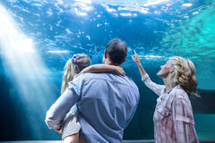 Familly looking at fish tank Royalty Free Stock Photography