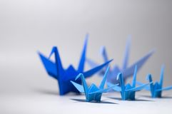 Family. A group of 5 origami birds with focus on the smaller bird in front Stock Photography