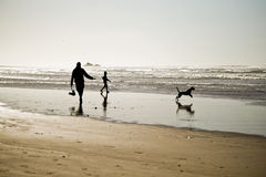 Family. The family walks with dog on the beach Royalty Free Stock Image