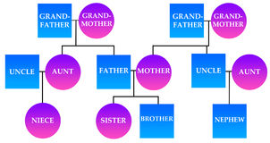 Family. Diagram explaining relationships in a family Royalty Free Stock Photography