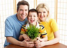 Family. Happy family. Father, mother and boy with plant royalty free stock photography