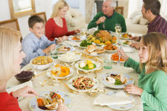 Family All Together At Christmas Dinner.  royalty free stock images
