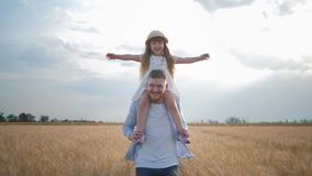 Family amusements in field, happy young dad with little kid girl in straw hat on his shoulders which spreads her hands stock video