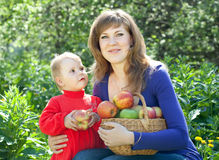 Family with apples harvest Stock Images