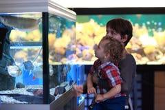 Family at aquarium Stock Image