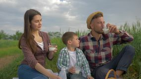 Family atmosphere, merry girl with guy and kid boy pour milk into glasses and drink during family picnic and enjoy. Outdoor recreation in green field close up stock video