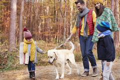 Family during autumn Royalty Free Stock Photos