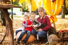 A family in the autumn park. A family with a dog sitting on big pumpkins in the autumn park Stock Photography