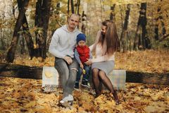 Family in a autumn park. Mother and little son sitting in a autumn forest. Woman with little child sitting in a park. Family in a autumn park. Mother and little stock photo